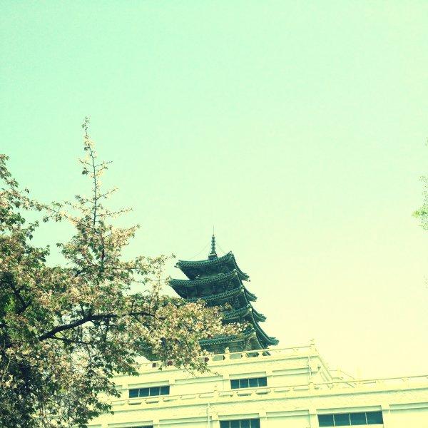 Seoul Sejongno