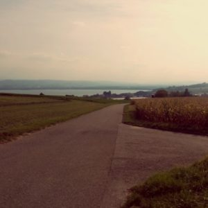 Mont Vully